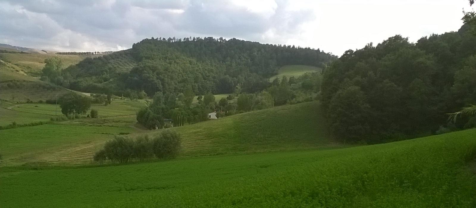 Formaggi bio Toscani
